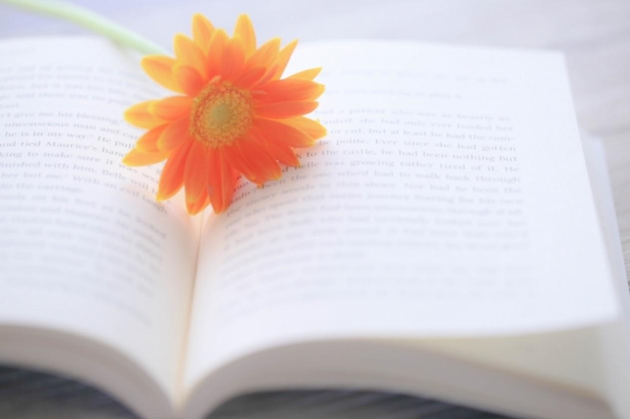 記事 田中特任助教が執筆を担当しました書籍がシーエムシー出版から発刊されました。のアイキャッチ画像